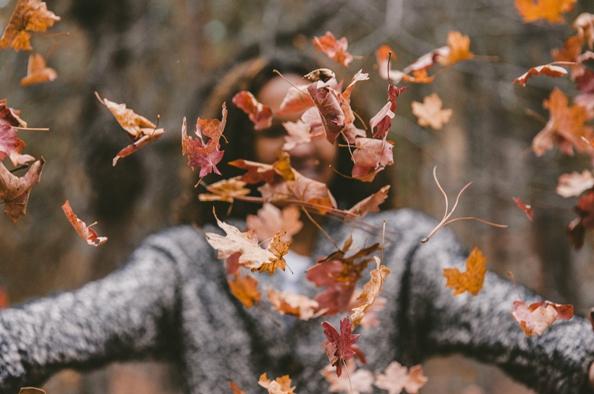 A felkészülés időszaka – Őszi munkák a kertünkben
