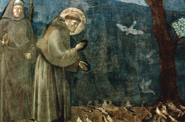 Az állatok világnapja és Assisi Szent Ferenc