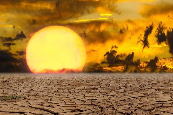 Az élővilág védelmében – Az elsivatagosodás és a kiszáradás elleni küzdelem világnapja