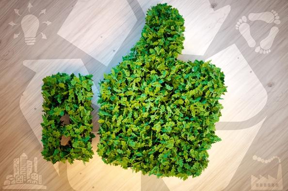 Zöld konyha – hogyan étkezzünk tudatosan?