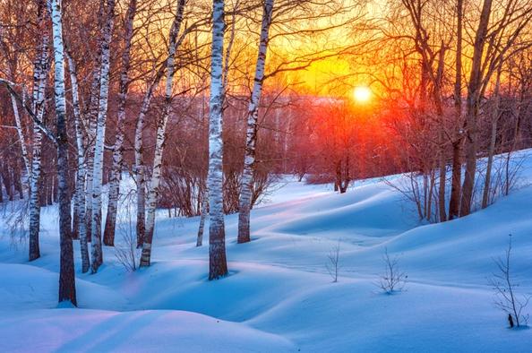 Ránk várnak a téli erdő csodái – kiránduljunk a Hegyvidéken!
