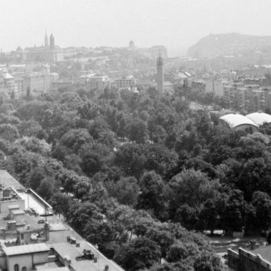 Az egyik legszebb budai park - a Városmajor 1. rész