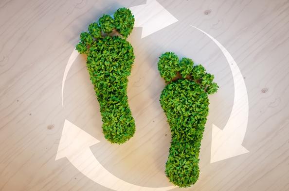 Így csökkentse családja ökológiai lábnyomát!