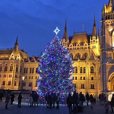 Gyönyörű ragyogás – az ország karácsonyfája