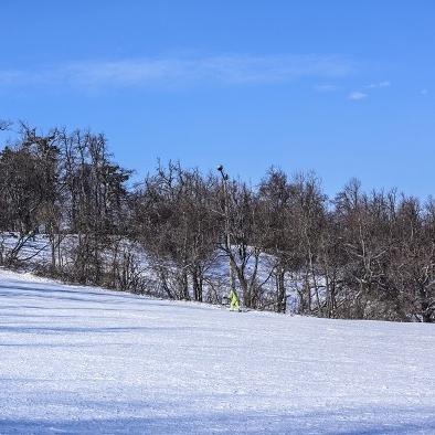 Csodás téli napok: irány a Normafa!