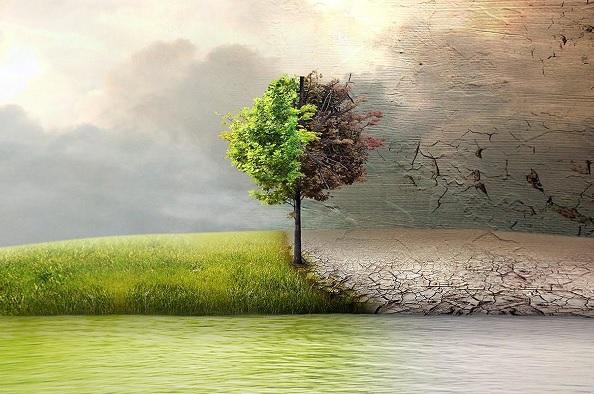 Özönvíz előtt – környezetvédelmi filmbemutató a Barabás Villában