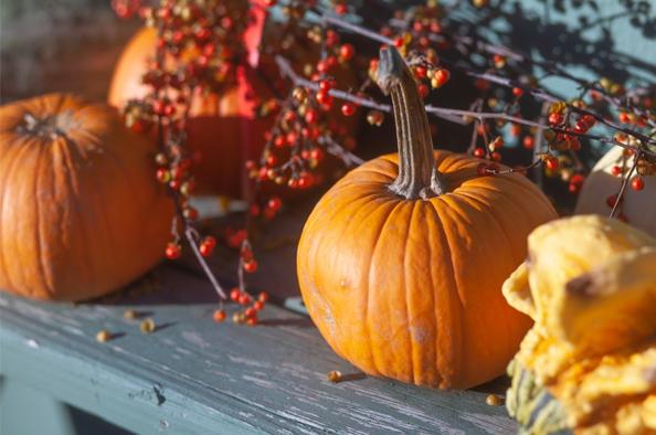 Kedvenc őszi csemegénk, a sütőtök